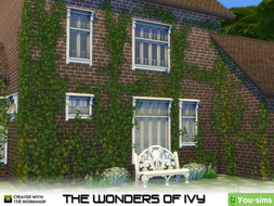 Сет растений The Wonders of Ivy от mutske